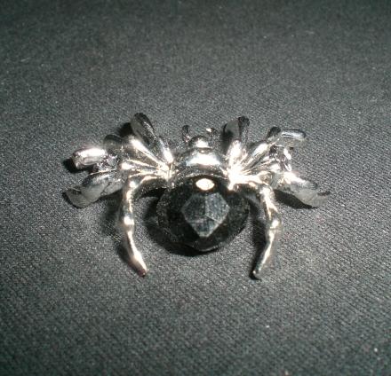 Kleine Spinne mit schwarzem Strass