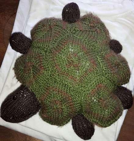 Dagis Schildkröte