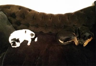 Die Prinzessin und Tyson auf der Couch
